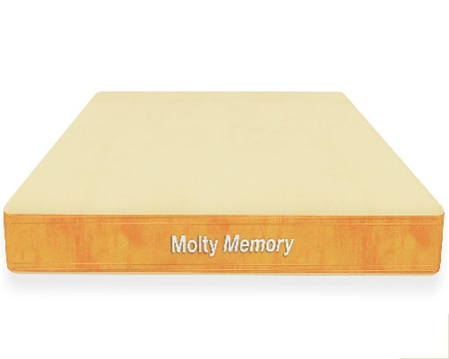 xmoltyfoam-innovation-series-molty-memory.jpg.pagespeed.ic.cHkVt8p4Do