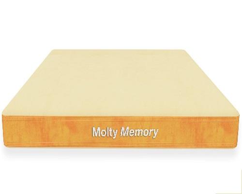 xmoltyfoam-innovation-series-molty-memory.jpg.pagespeed.ic.cHkVt8p4Do